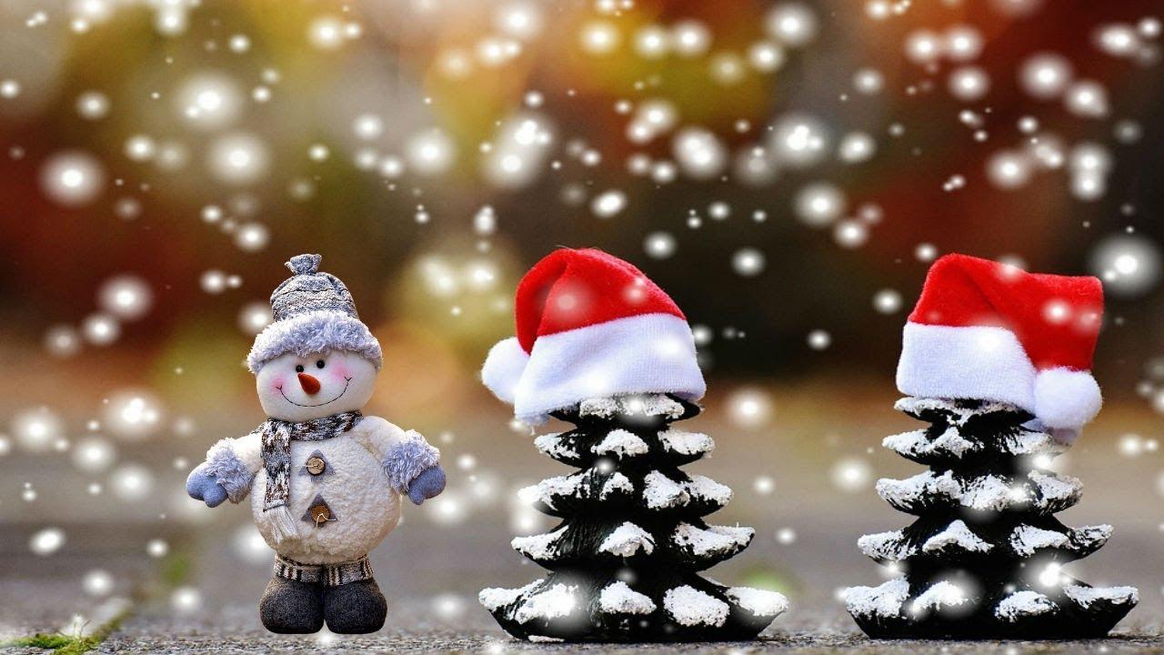 Videos virales de Navidad | Agencia de Periodismo ...
